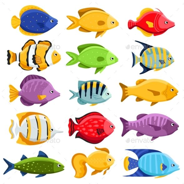 Colorful Coral Reef Tropical Fish Set Vector Illustration Sea Fish