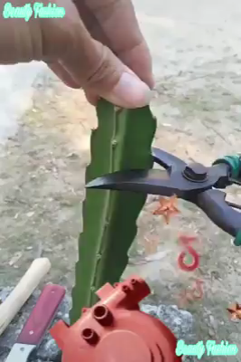 Pin By Marjancho On Kalemejne Video Diy Plants