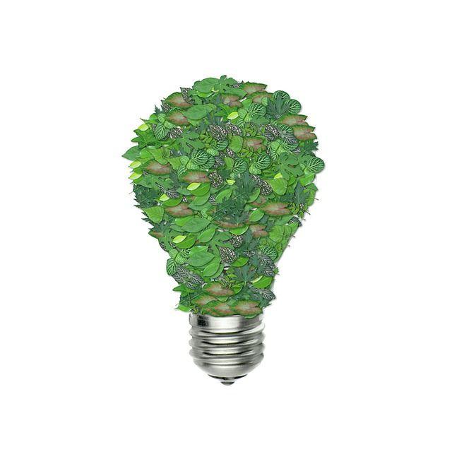 Free Image On Pixabay Green Bulb Ecology Green Energy Solar Energy Facts Energy Saving Building Solar Energy Diy