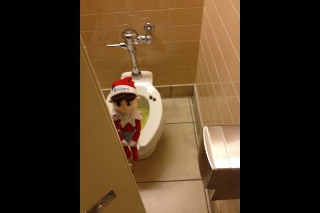 I didn't know elf on the self had same bodily functions we do!