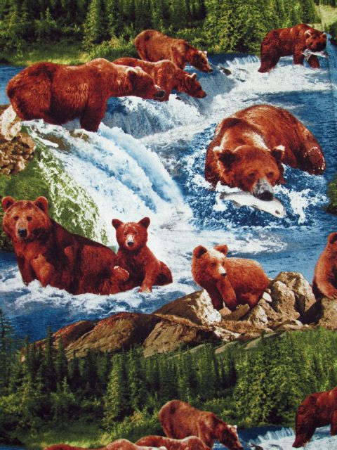 https://www.kandafabrics.com/store/p818/#2000_GRIZZLY_BEARS_FISH_WILDLIFE_PINE_TREES_SCENIC.html