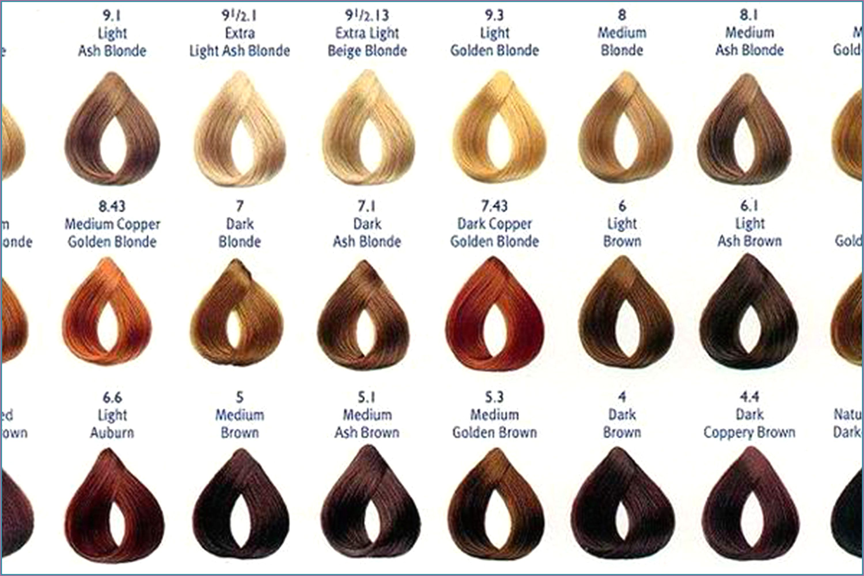 Matrix Colorinsider Color Chart In 2020 Hair Color Chart Loreal Hair Color Chart Matrix Hair Color