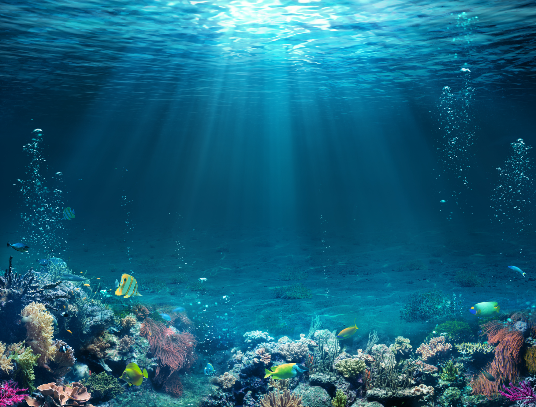 World Oceans Day In 2020 Oceans Of The World Ocean Day Underwater Painting