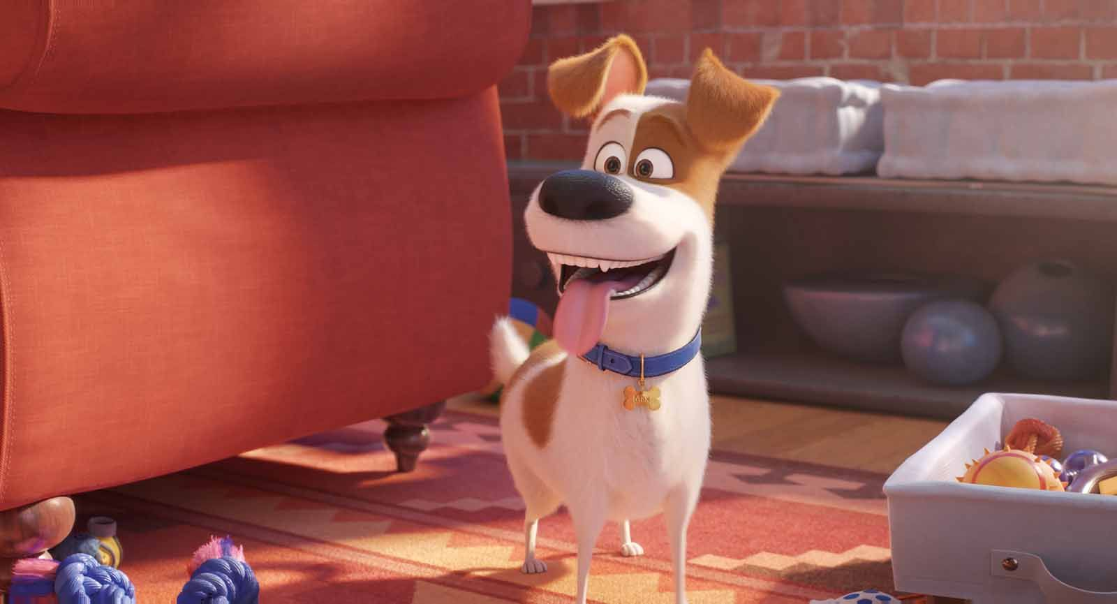 The Secret Life Of Pets 2 Pelicula Completa En Espanol Latino Descargar Secret Life Of Pets Secret Life Pets
