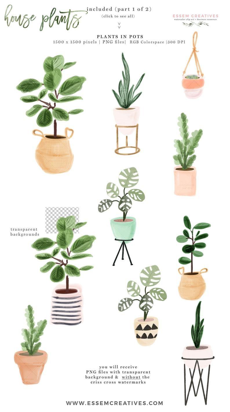 Watercolor House Plants Clip Art Indoor Plants Potted Plant Etsy House Plant Pots Indoor Plant Pots Plant Clips