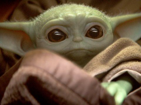 The Mandalorian Director Says Baby Yoda Is A Perfectly Fine Name Insider Mandalorian Star Wars Fans Yoda