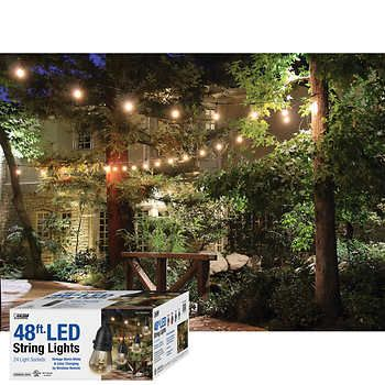 Feit Electric String Lights Delectable Feit 48Ftled Outdoor Weatherproof Color Changing String Light Set Decorating Design