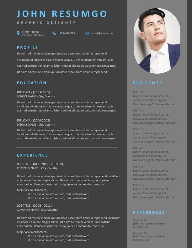 Themis Modern Dark Resume Template Resumgo Com Resume Template Modern Resume Template Resume