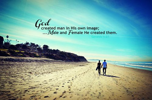 pin on in the beginning god created