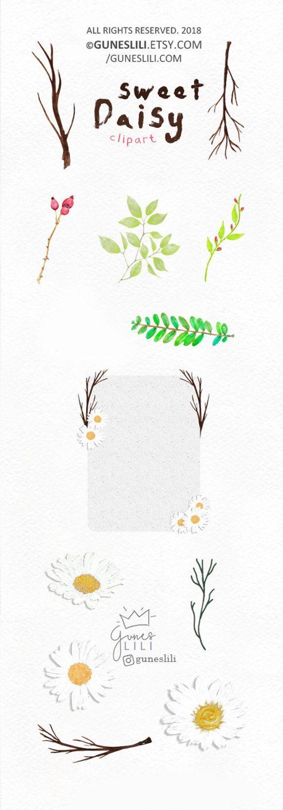 Pin by gunes lili on watercolor floral clip art packs by gunes lili daisy flower clipart boho floral clipart white flower clipart digital download wedding clipart wreath clipart acrylic flowers clipart izmirmasajfo