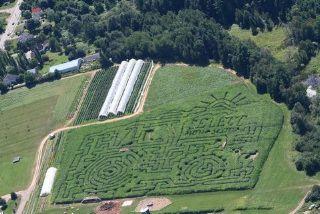 Noggins Corner Farm Market Upick Apple Pumpkins Corn Maze And Lovely Food Farm Market Farm Corn Maze