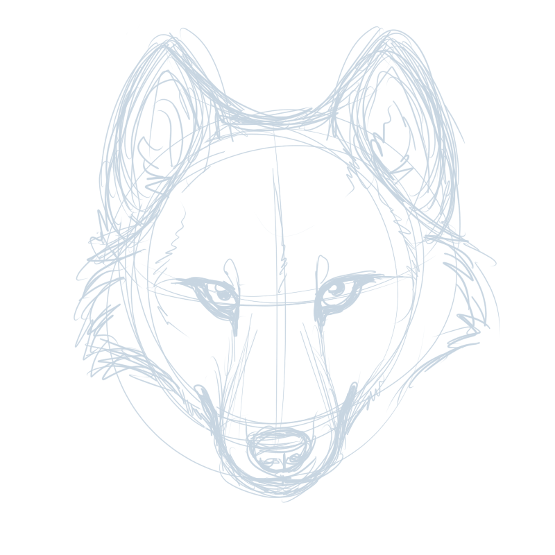 gallery for drawings of a wolf head