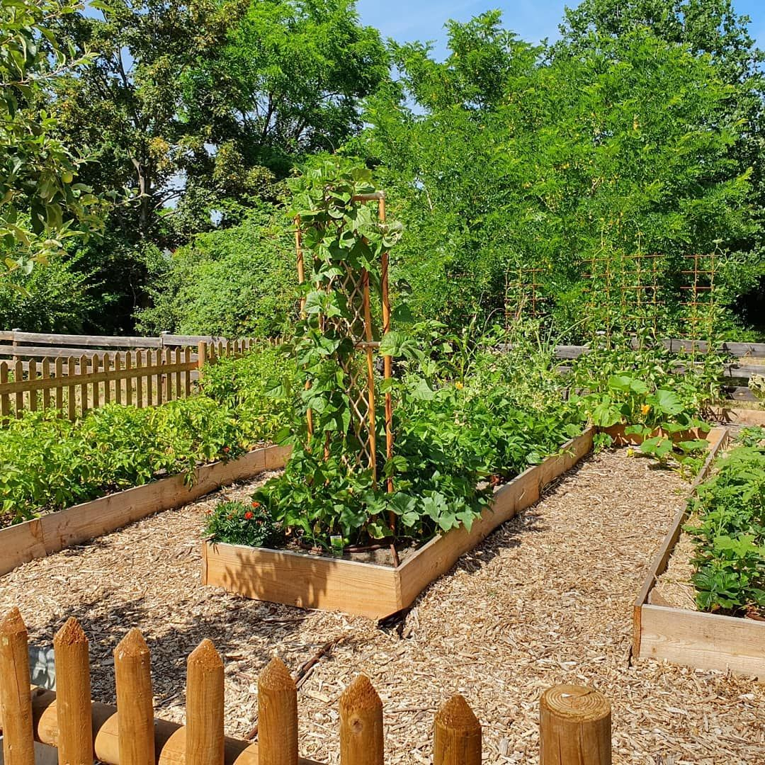 Leben Als Selbstversorger 10 Tipps Fur Einsteiger In 2020 Naturnaher Garten Naturgarten Bauerngarten