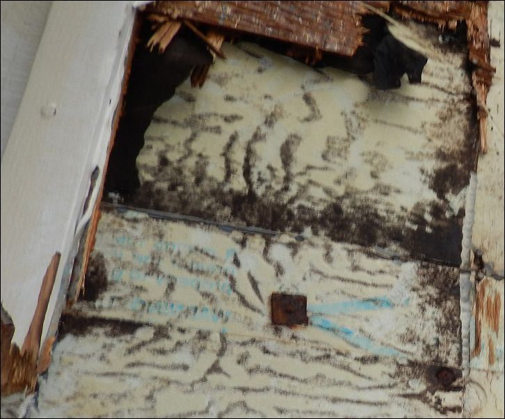How much does mold removal cost for a basement mold