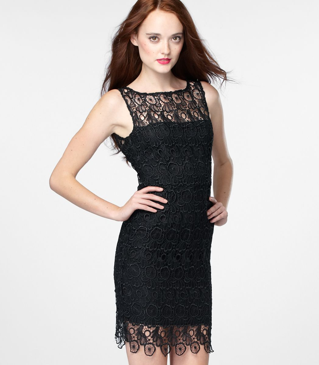 Bb dakota lace morrow dress fashion fanatic pinterest dress