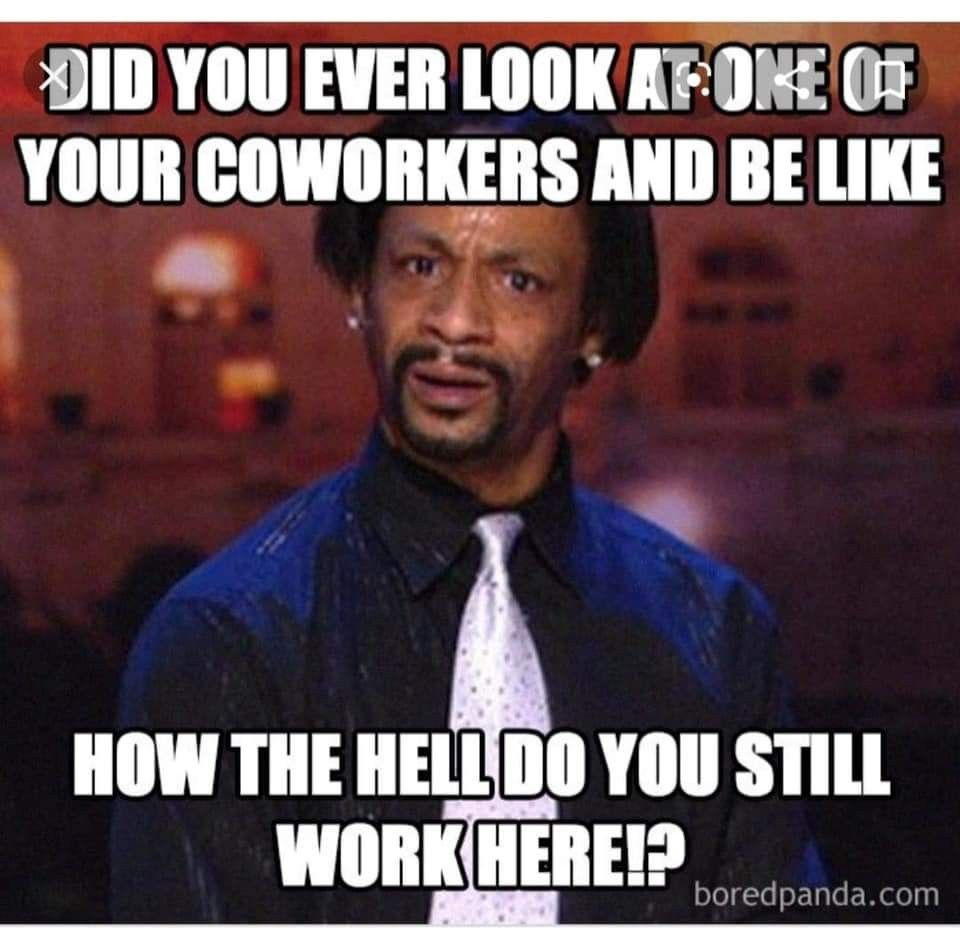 Pin By Melissa Coles On Quotes In 2020 Funny Coworker Memes Co Worker Memes Work Humor