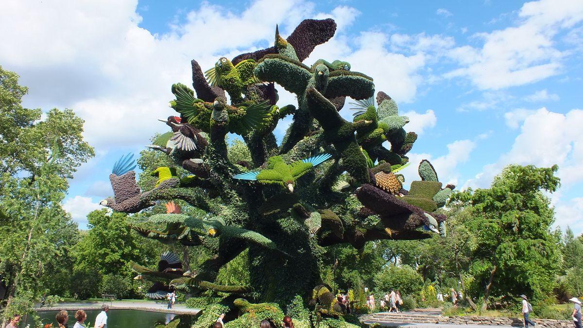 The Tree Bird, foi criado por uma equipe de Montreal, no Canadá, a Árvore das Aves é de 6 andares de altura e retrata 60 espécies de aves ameaçadas de extinção, répteis e anfíbios em risco atualmente na Terra. Mosaïcultures Internationales de Montréal 2013