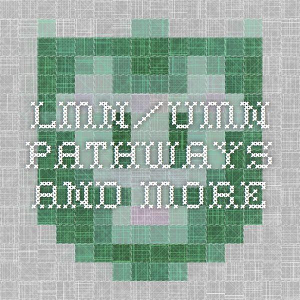 LMN/UMN pathways and more
