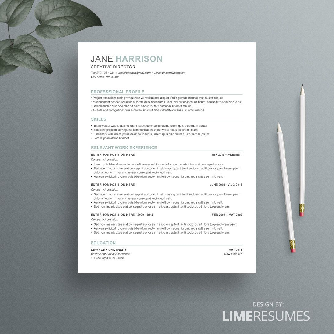 Combination Resume Template Combination Resume Format Resume Template Word Resume Template Job Resume Template