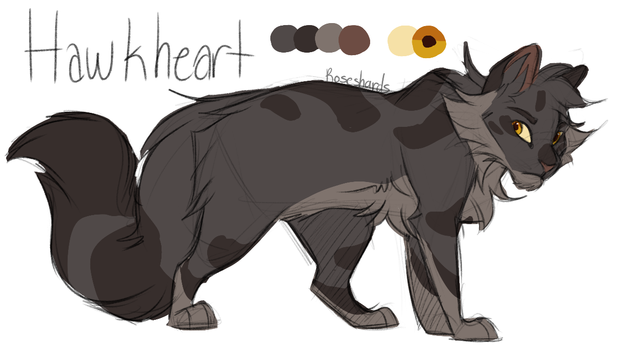 Warrior Cat Designs Warrior cats art, Warrior cat