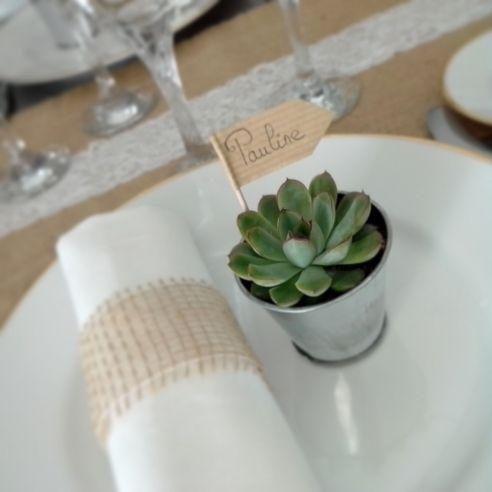 Mini Plante Grasse Et Pot En Zinc 5 Pieces Avec Images