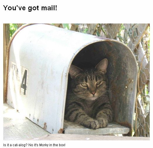 You've got mail :)