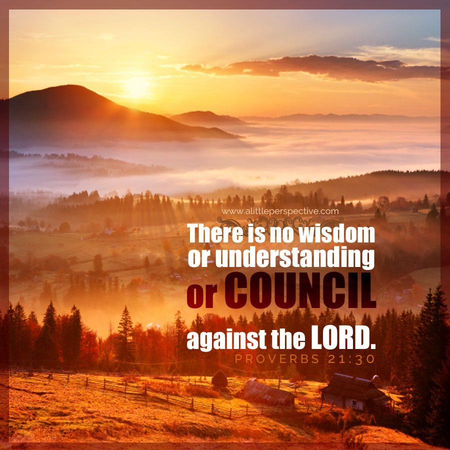 There is no wisdom or understanding or council against the lord pro