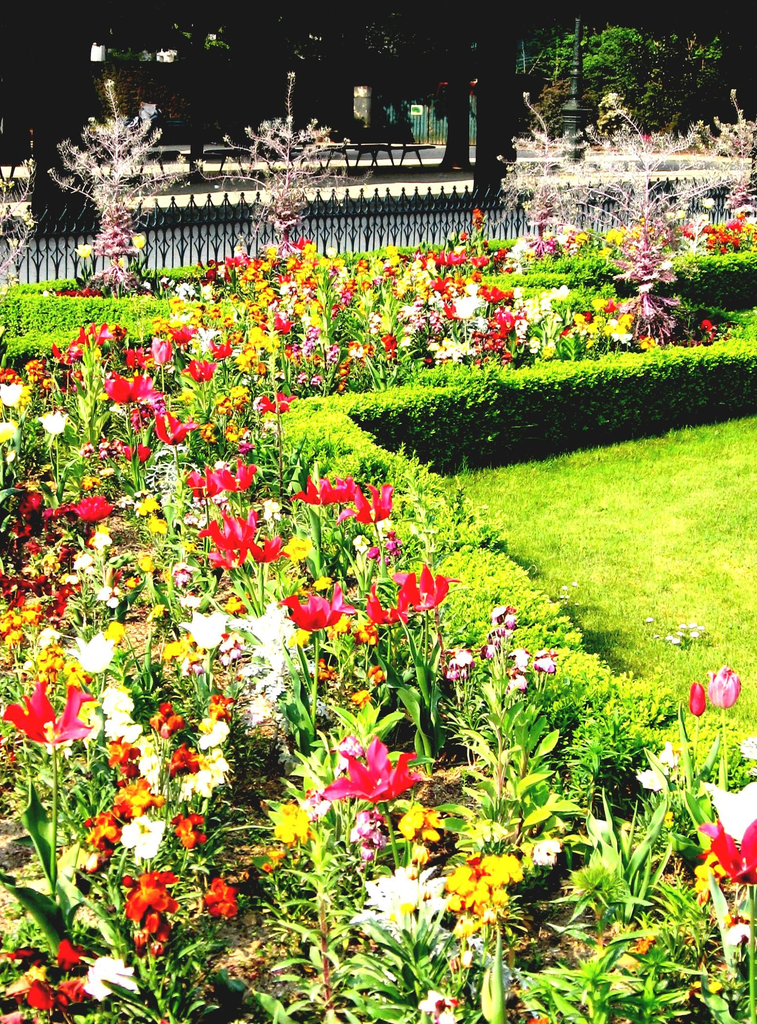 Garden Amazing Look Of Perennial Flower Garden Design Ideas And