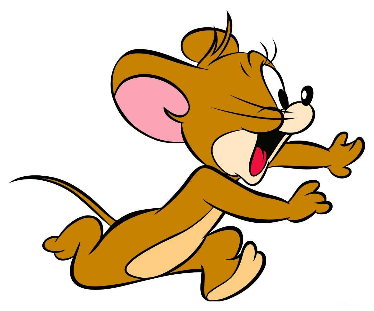 jerry from tom and jerry | pcc_concept | cartoon, tom, jerry cartoon