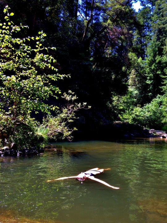 Garden Of Eden Santa Cruz Mountains Ca Adventure Is Out There In
