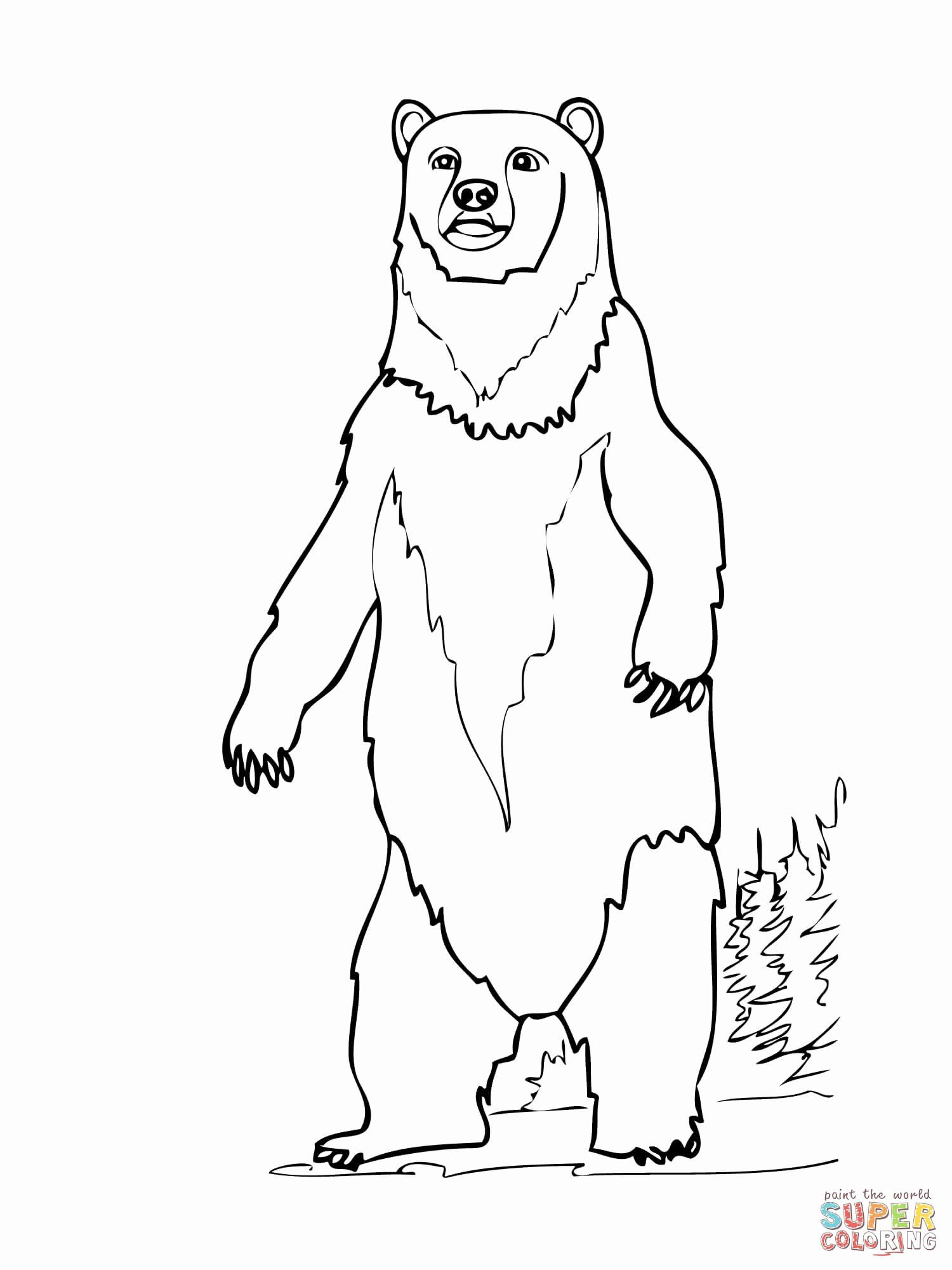 Brown Bear Coloring Page Elegant Brown Bear Printables Coloring Home Coloriage Ours Ours A Colorier Coloriage A Imprimer Gratuit