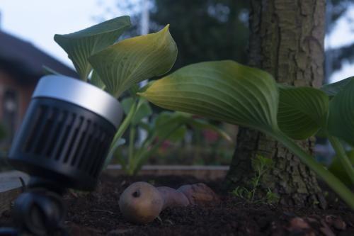 Maak Eigen Lichtplan : Hoe maak je een lichtplan voor de tuin eigen huis en tuin