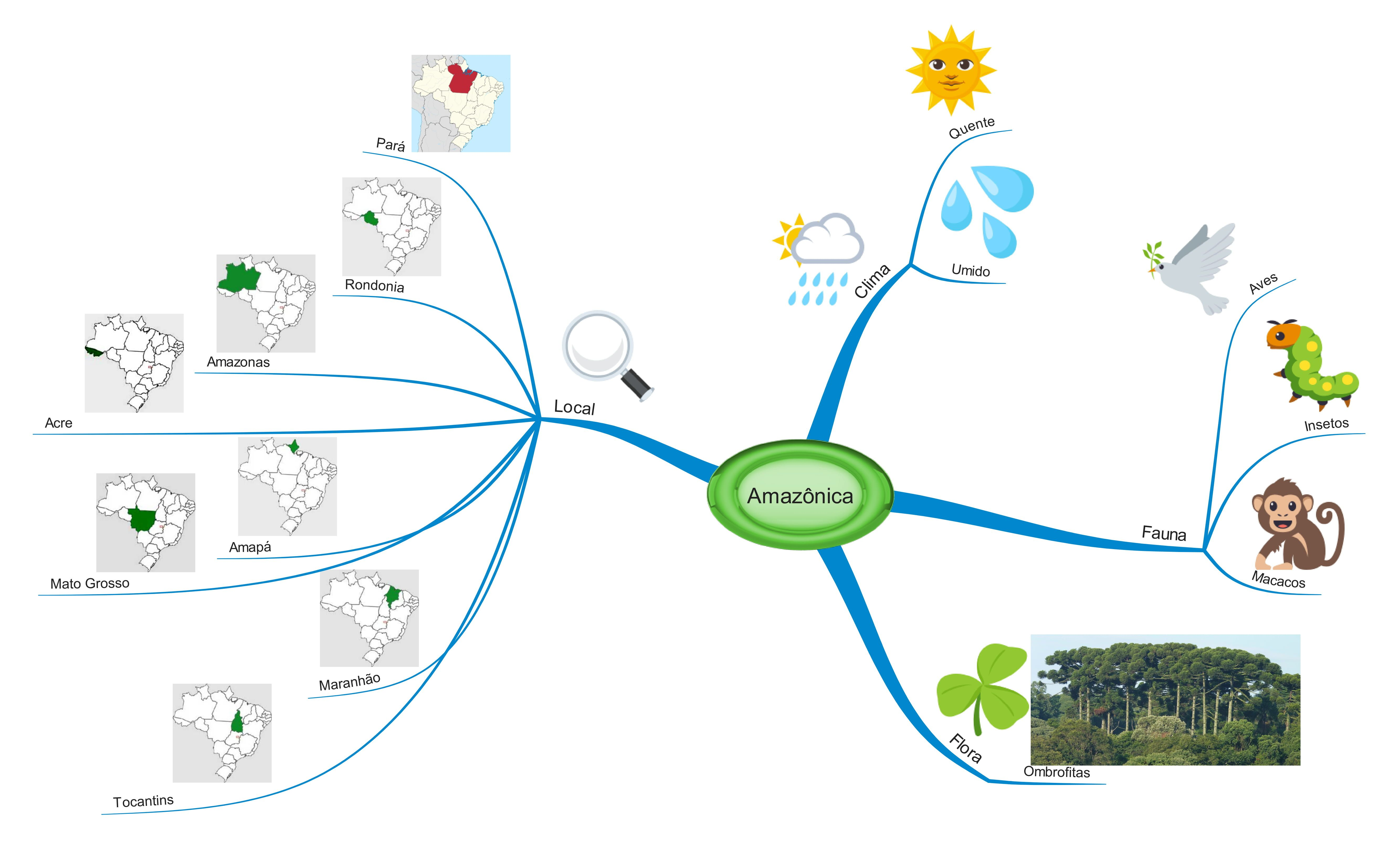 biomas brasileiros mapa mental amazonia | 精神地図 | Pinterest