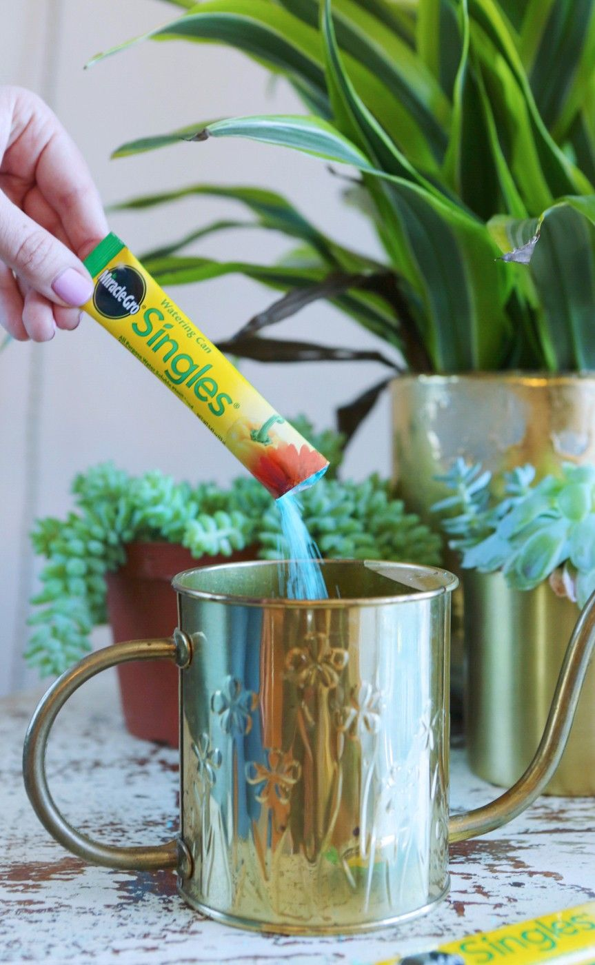 This watering can single packet gives you the perfect amount of