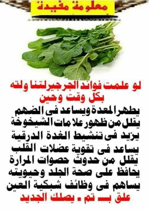 من فوائد الجرجير Organic Health Health Fitness Nutrition Vegetable Benefits