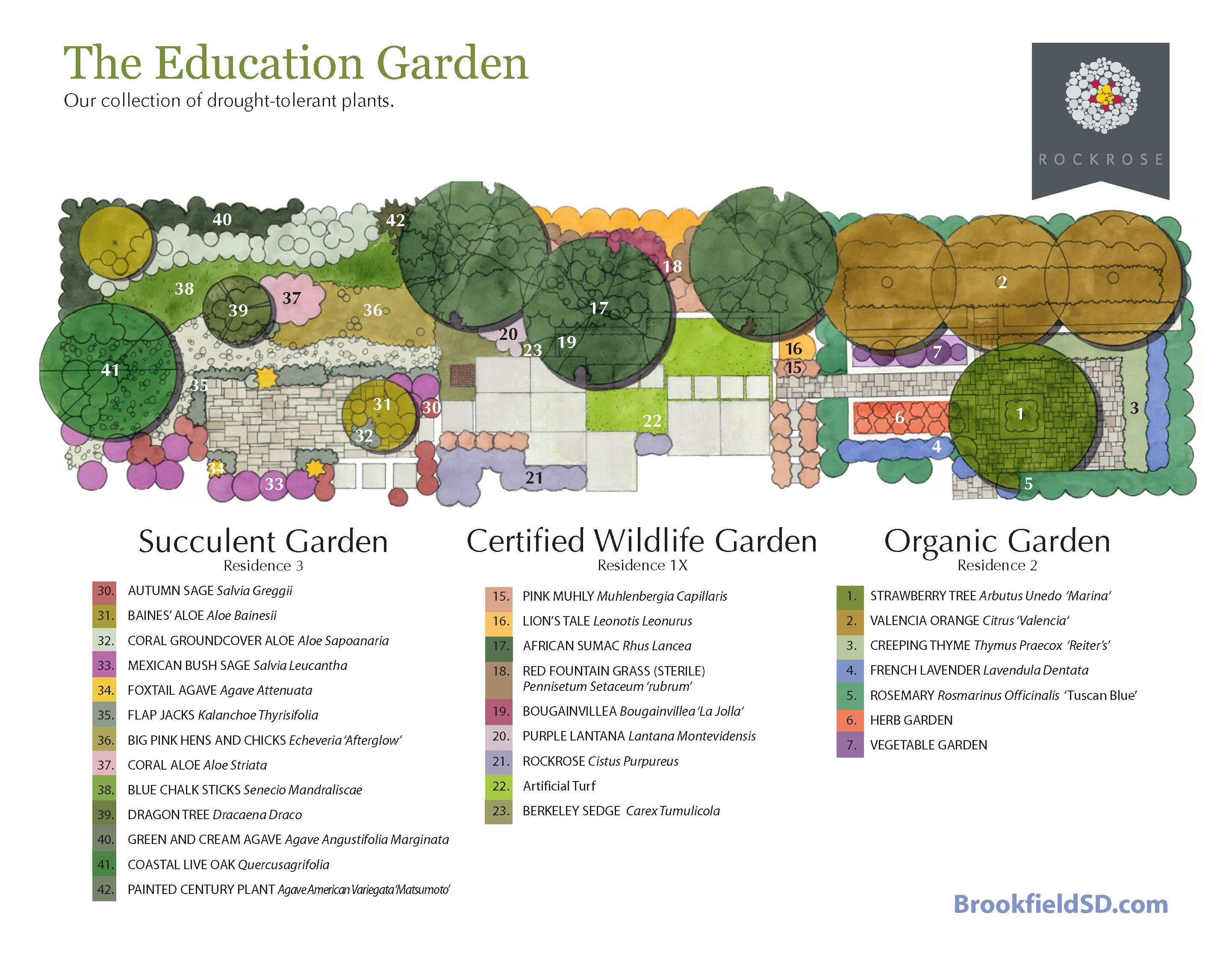 Garden Ideas. 3 concepts shared.  A succulent garden, an organic garden, and a certified wildlife garden.