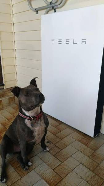 Photo of Tesla Powerwall 2 Domestic Solar Battery Installation – Phot…