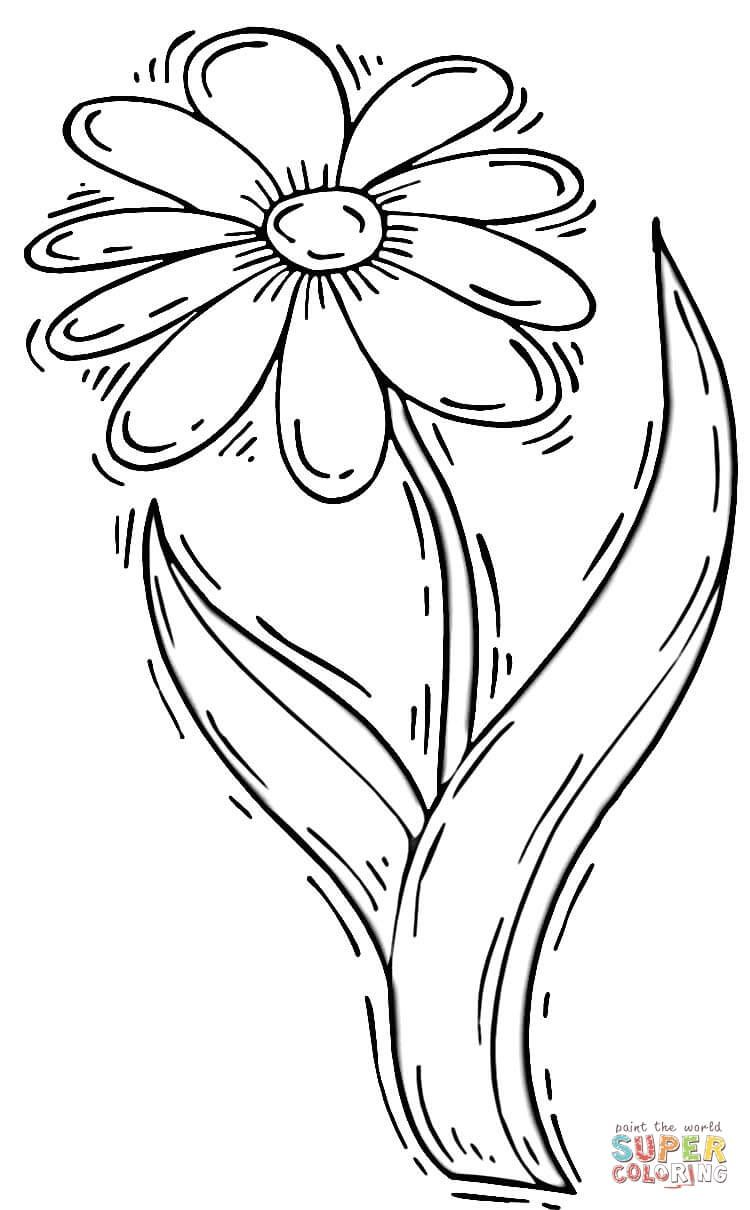 Daisy Flower Coloring Page Free Printable Coloring Pages Flower Coloring Pages Abstract Coloring Pages Coloring Pages
