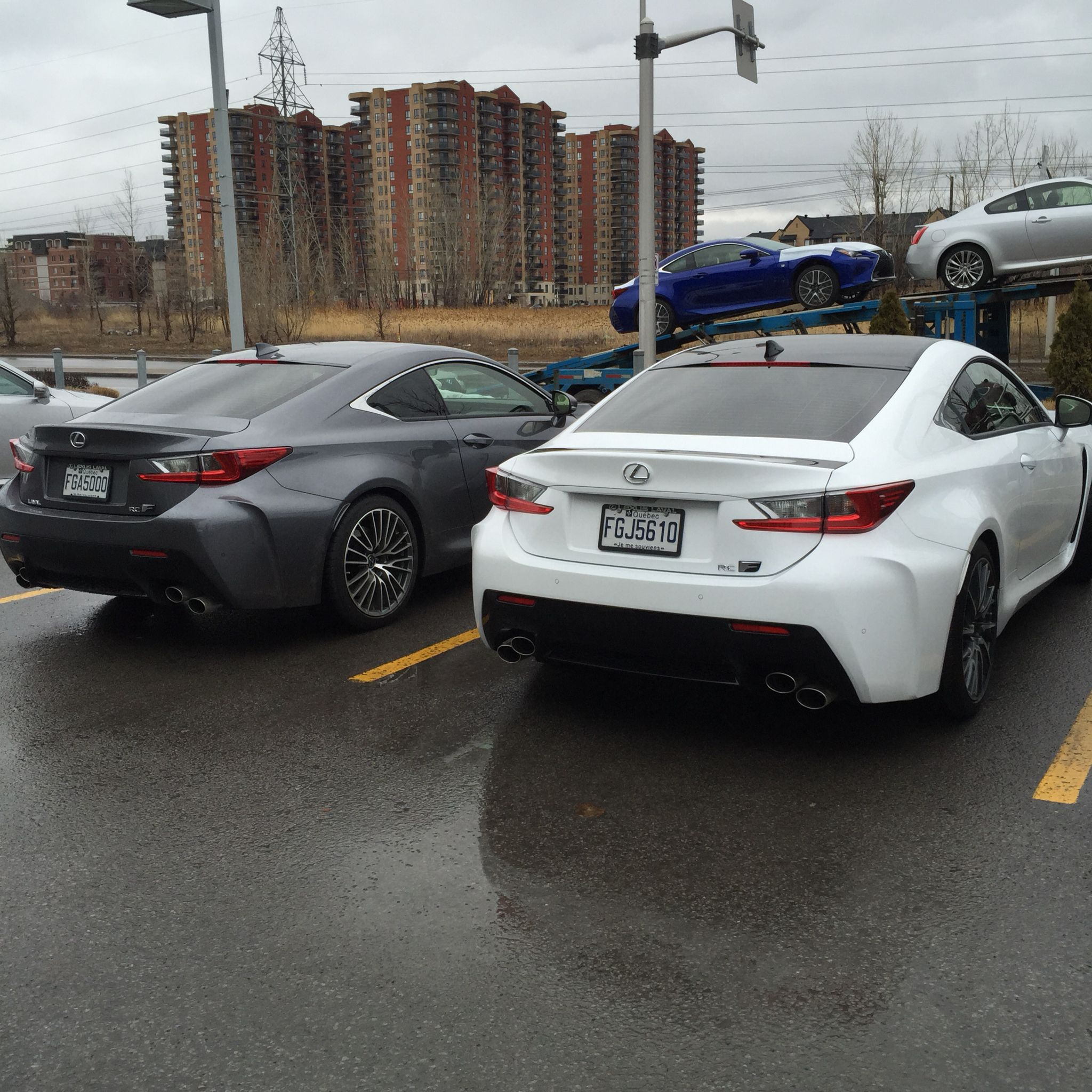 2015 lexus rcf nebula grey and rcf ultra white performance package lexus rcf