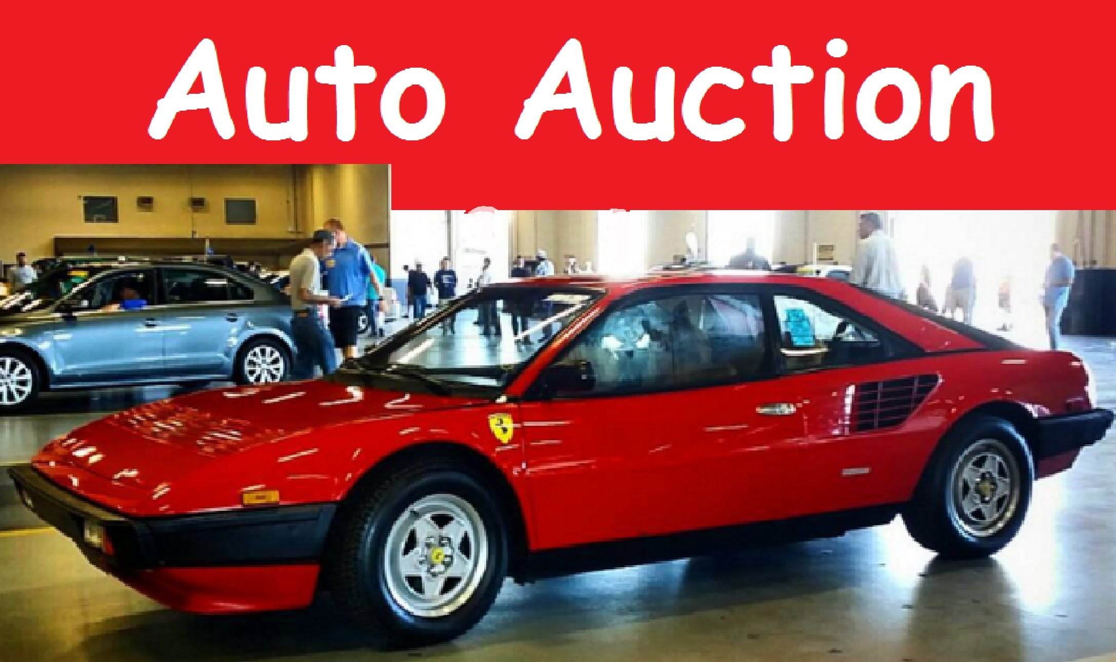 Previewing Cars At Wholesale Dealer Only Auto Auction How