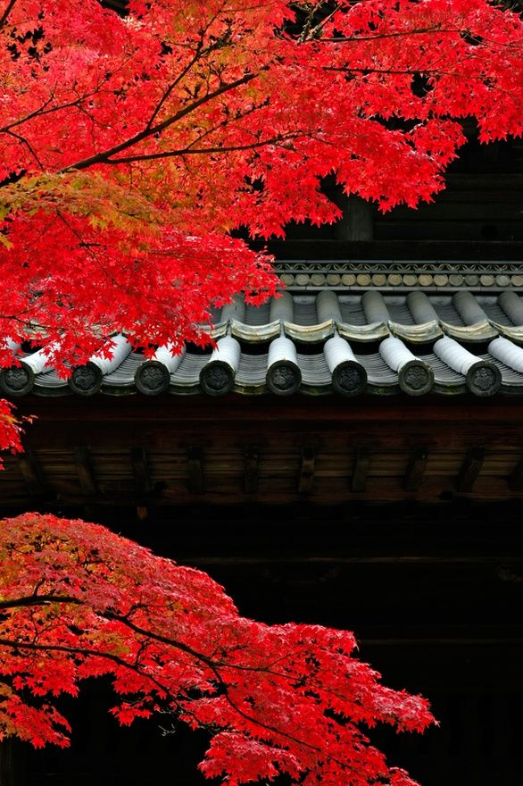 colour in japan