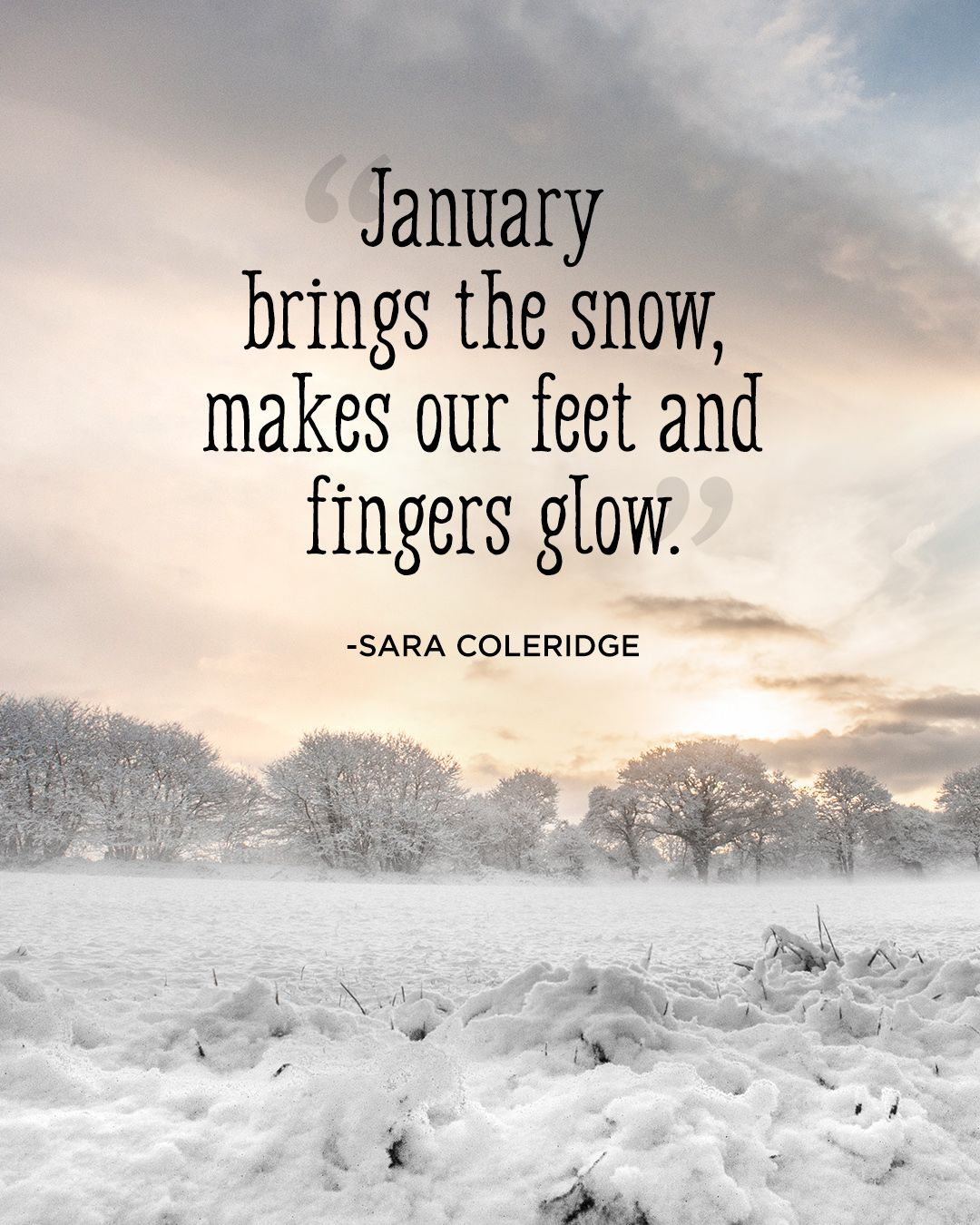 Winter Quotes: Winter Quotes That Will Help You Enjoy The Beauty Of The