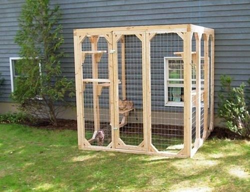Outdoor Cat Enclosures For Sale For 2020 Ideas On Foter Diy Cat Enclosure Outdoor Cat Enclosure Outdoor Cat Run