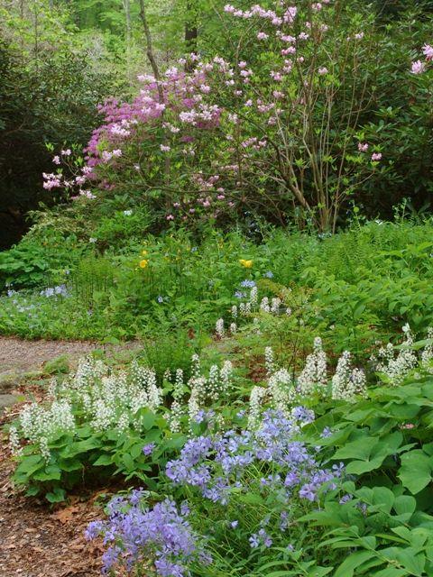 Spring At Newfs Beautiful Gardens Woodland Garden Garden In The Woods
