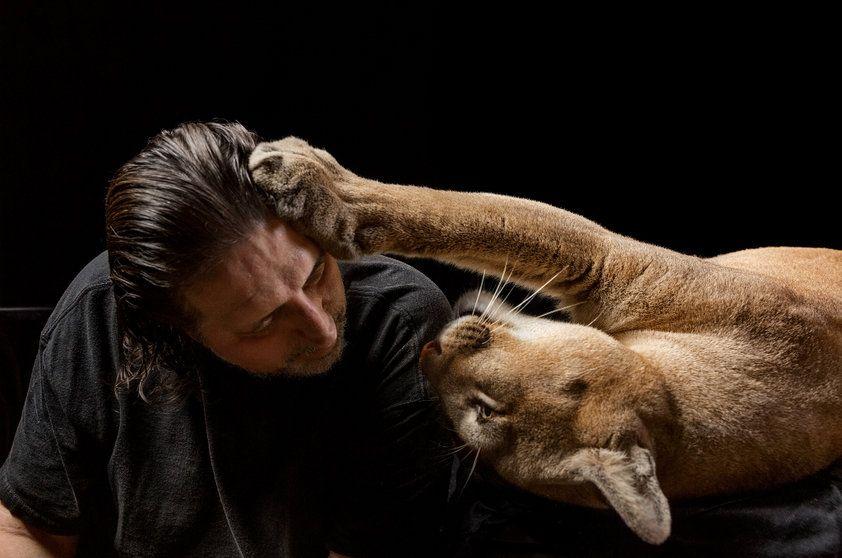 """NG - A puma Sasha é """"o amor da minha vida"""", diz Mario Infanti, músico da Flórida"""