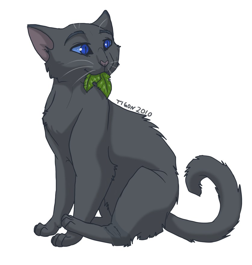 Warrior Cats Kit To Leader Bloodclan: Cinderpelts The BEST Medicine Cat. Bluestar's The Best