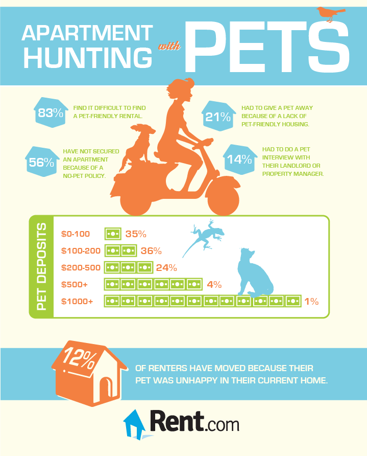 Perfect Finding Pet Friendly Apartments [Infographic]   Rent.com Blog