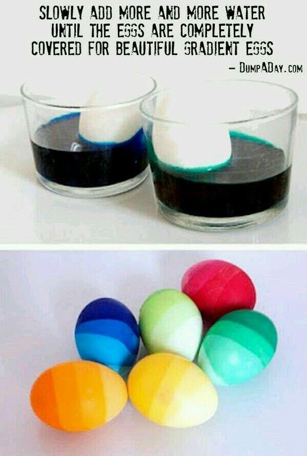 Eggs gradient
