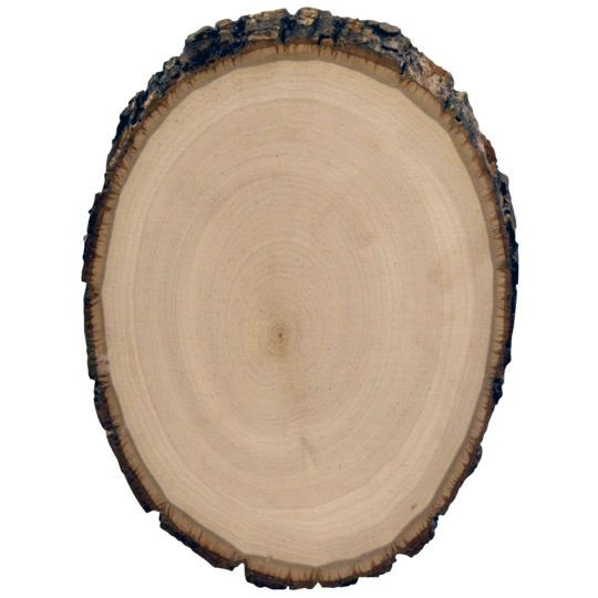 Walnut hollow basswood country round more wooden for How to cut wood slices