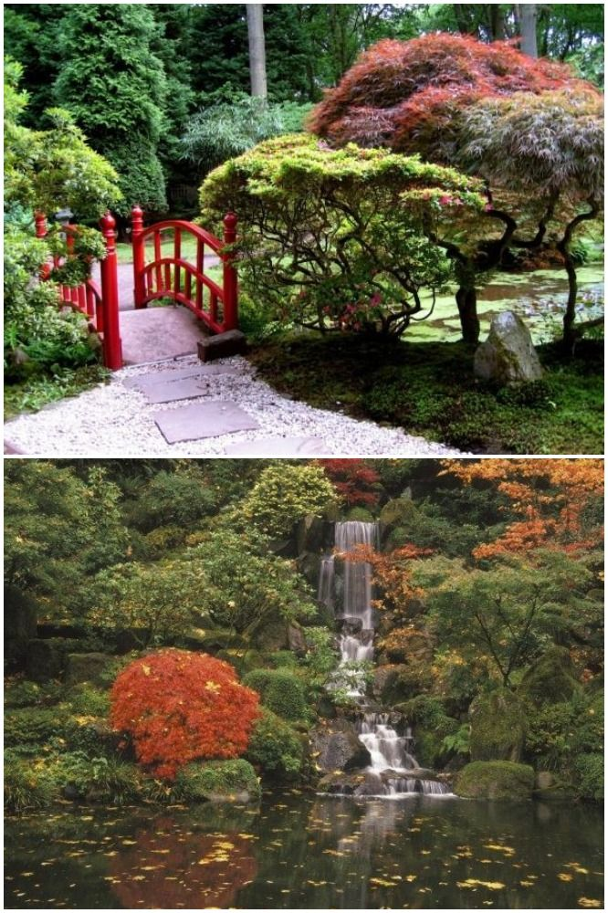 Pre-eminent Japanese Gardens: A Zen Atmosphere And Full of ...